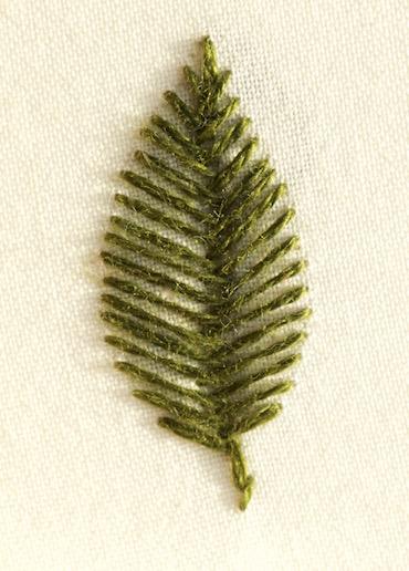 Photo of an open fishbone leaf