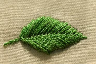 Photo of raised fishbone leaf
